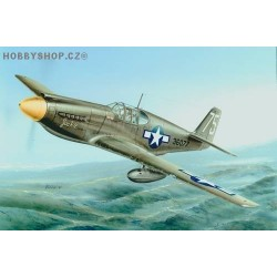 P-51A / F-6A Mustang - 1/72 kit