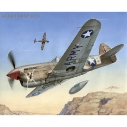 P-40F Warhawk Short tails over Africa - 1/72 kit