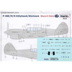 P-40E/M/N Stencil Data - 1/48 decal