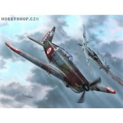 MS.406C.1 Czechoslovak & Polish Pilots - 1/72 kit