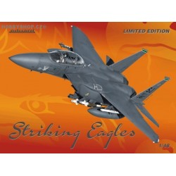 Strike Eagle Limited - 1/48 kit