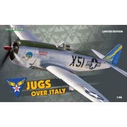 Jugs over Italy Limited Edition - 1/48 kit