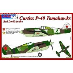 P-40B/C Tomahawk specialists detail set - 1/72 kit
