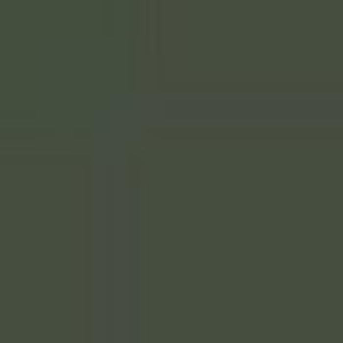 Dark Green RLM 71 / Dunkelgrun RLM 71
