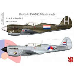 Warhawk in Dutch Service A3 print by Srecko Bradic