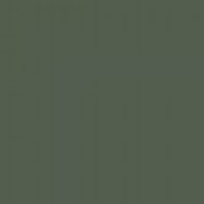 Olive Green RLM 80 / Olivgrun RLM 80