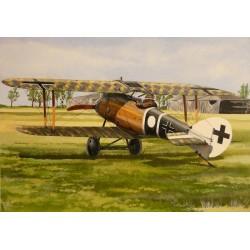 Roland D.VIa - 1/48 kit