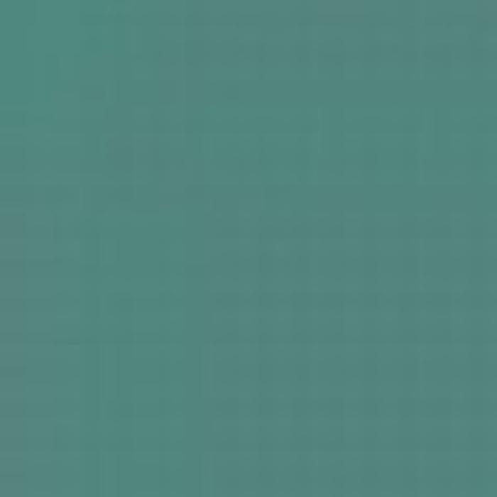 Light Green RLM 25 / Hellgrun RLM 25