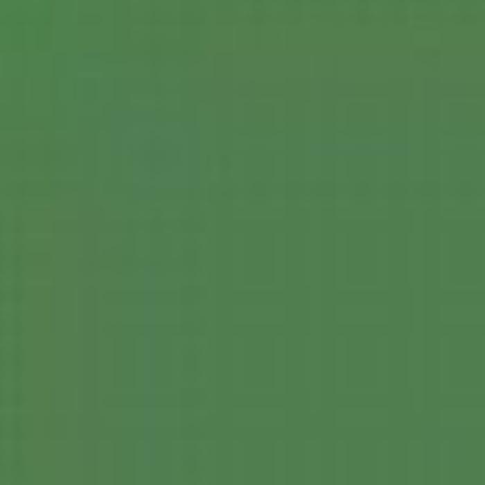 Green 19L