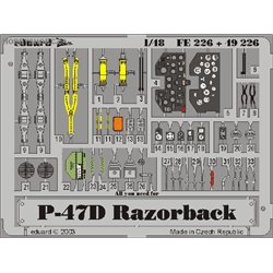 P-47D-20 - Painted - 1/48 PE ZOOM set