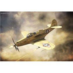 P-39Q Airacobra - 1/144 kit