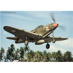 P-39 D-F-K Airacobra - 1/144 kit