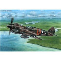 P-40E Warhawk 'Claws and Teeth' - 1/72 kit
