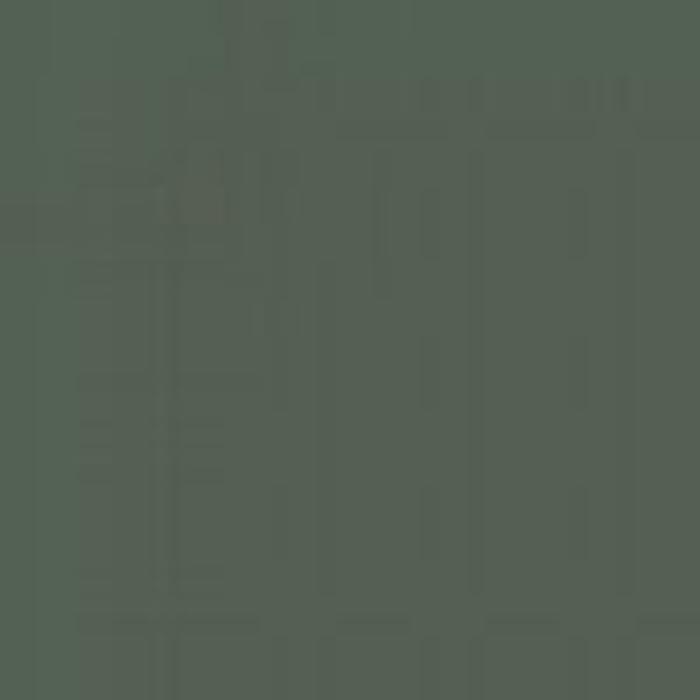 Dark Green RLM 82 / Dunkelgrun RLM 82