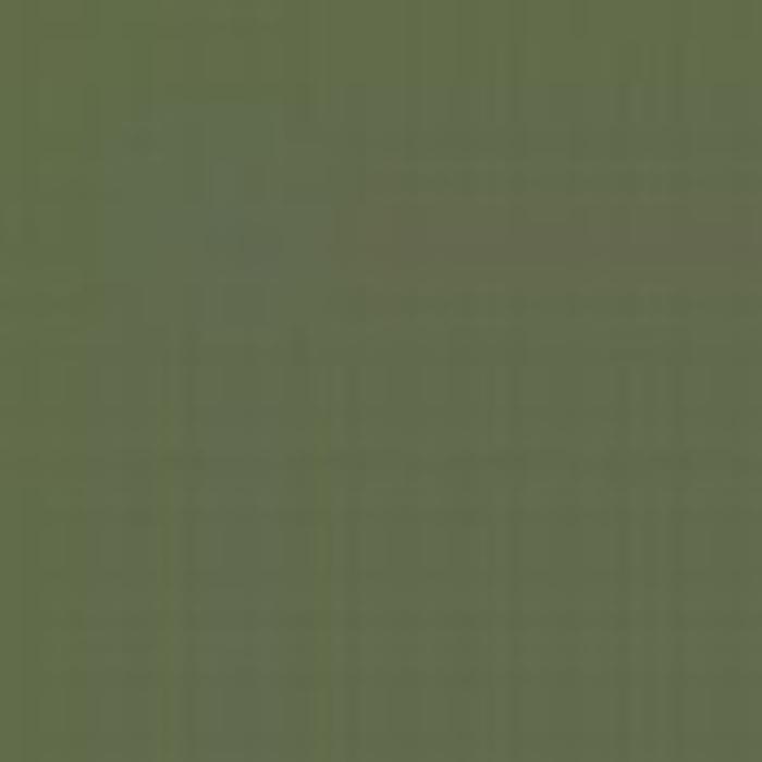 Green AMT 4