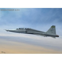 T-38C Talon 'Pacer Classic Program' - 1/72 kit