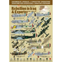 Rebellion in Iraq & Exporter - 1/72 decal