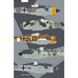 Fw 190F-8 Uknown Scheme & Markings - 1/48 decal