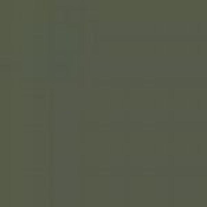 Dark Green FS 34079