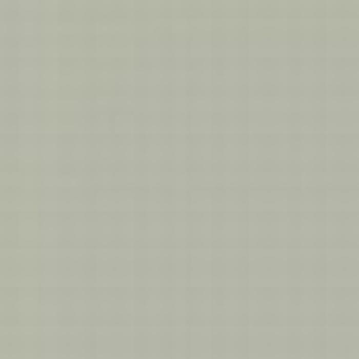 Light Gull Grey ANA 620