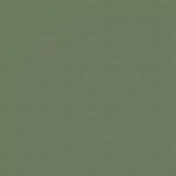 Aircaft Grey Green emailová barva