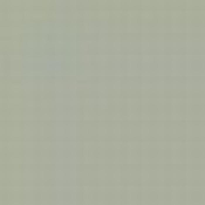 Pastel Grey CSN 1010