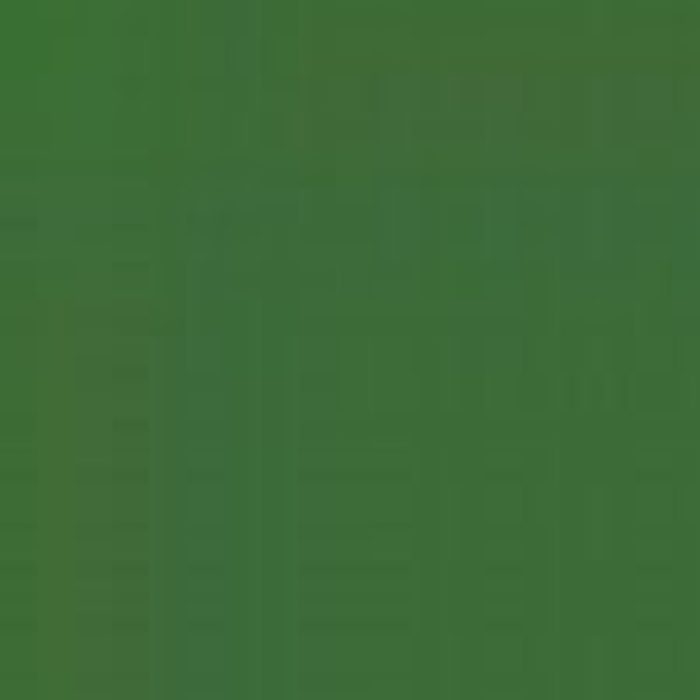Medium Green CSN 5300