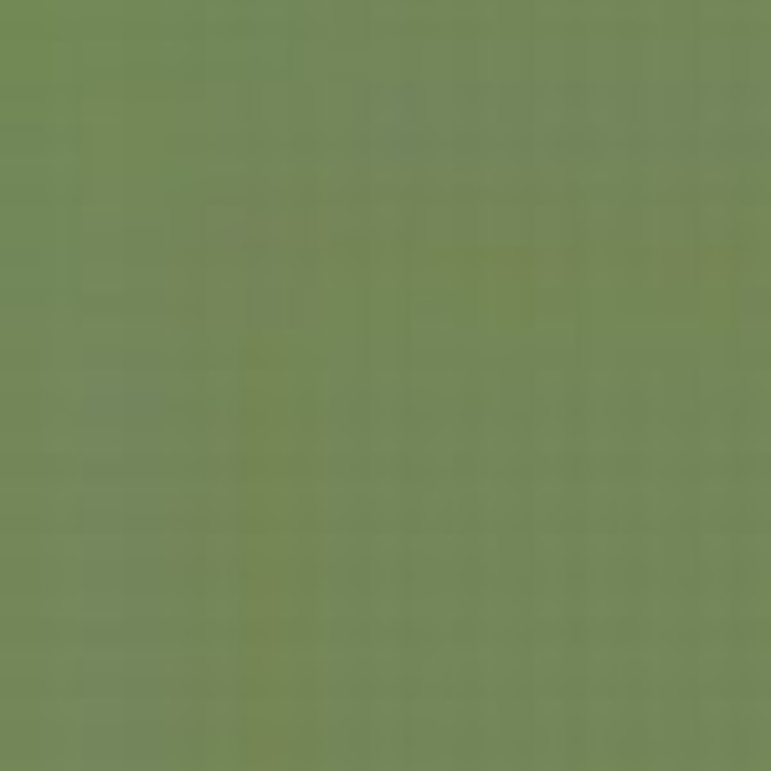 Green FS 34227