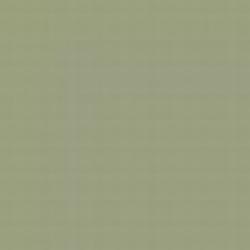 Grey Green FS 34424 emailová barva