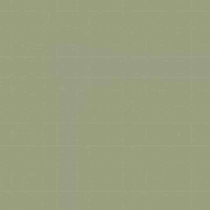 Grey Green FS 34424
