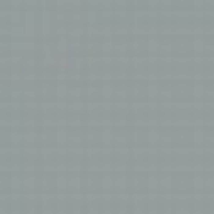 Light Grey ANA 602