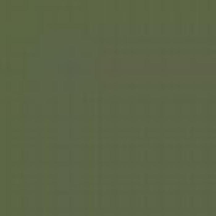 Green RLM 62 / Grun RLM 62