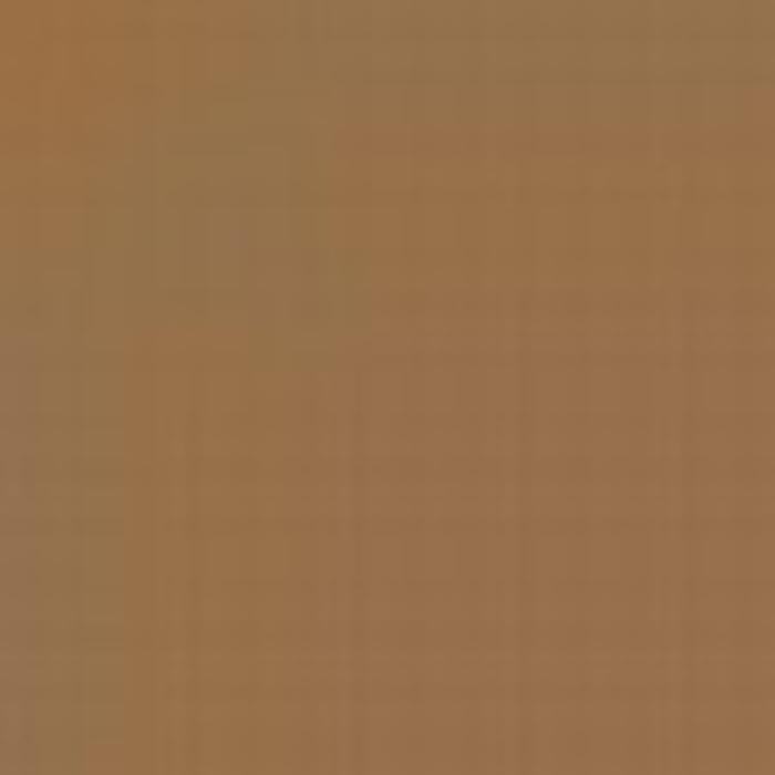 Sand Brown RLM 79 / Sandbraun RLM 79