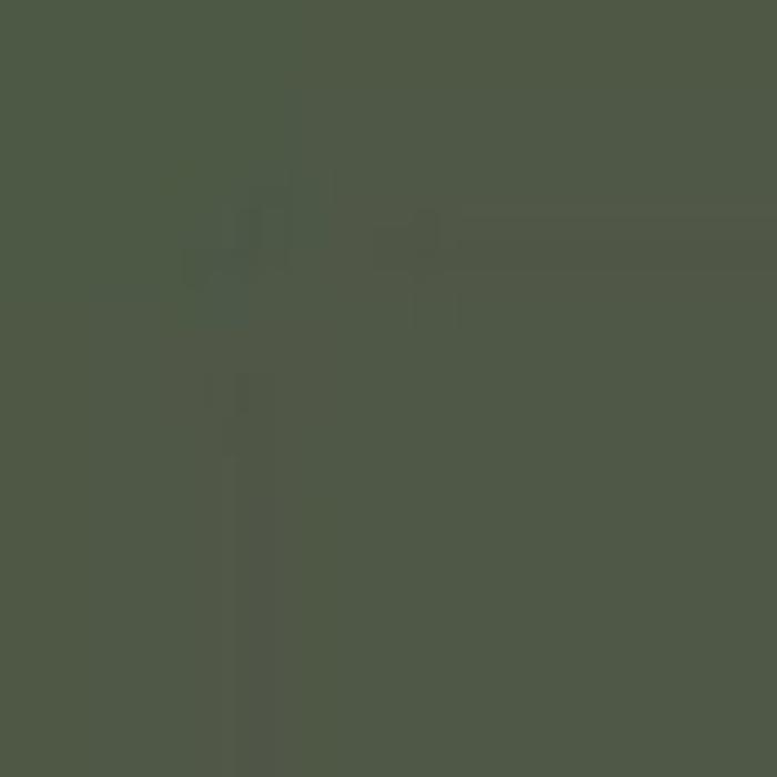 Dark Green  / Dunkelgrun