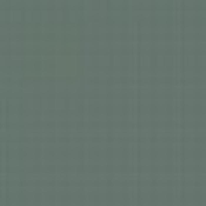Blue Grey AMT 11