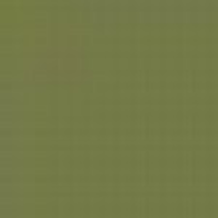 Green ANA 611