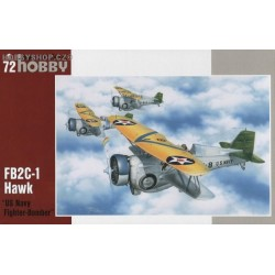 Curtiss BF2C-1 Hawk US Navy Fighter Bomber - 1/72 kit