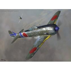 Nakajima Ki-44-II - 1/72 kit