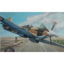 Supermarine Spitfire Mk.22 Special marking - 1/72 kit