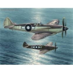 Seafire F Mk.XV Far East - 1/48 kit