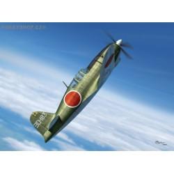 J2M5/6 Raiden (Jack) type 31/33 - 1/72 kit