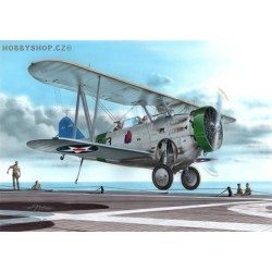 FF-1 US Navy two seat fighter - 1/72 kit